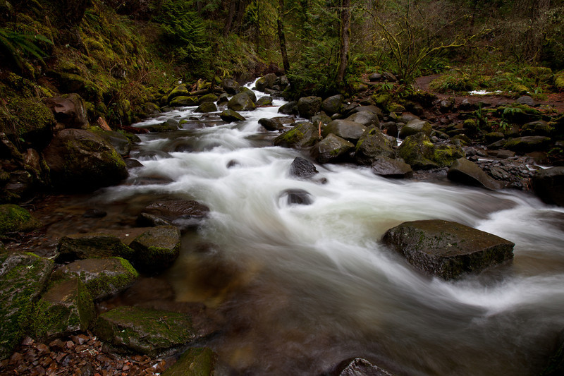 Stream above Multnomah Falls, Oregon