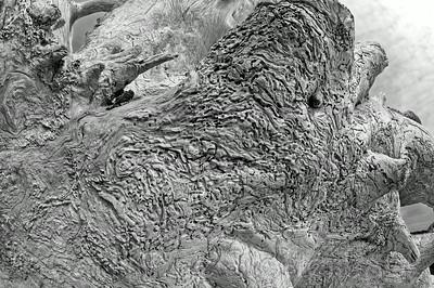 2012_0941