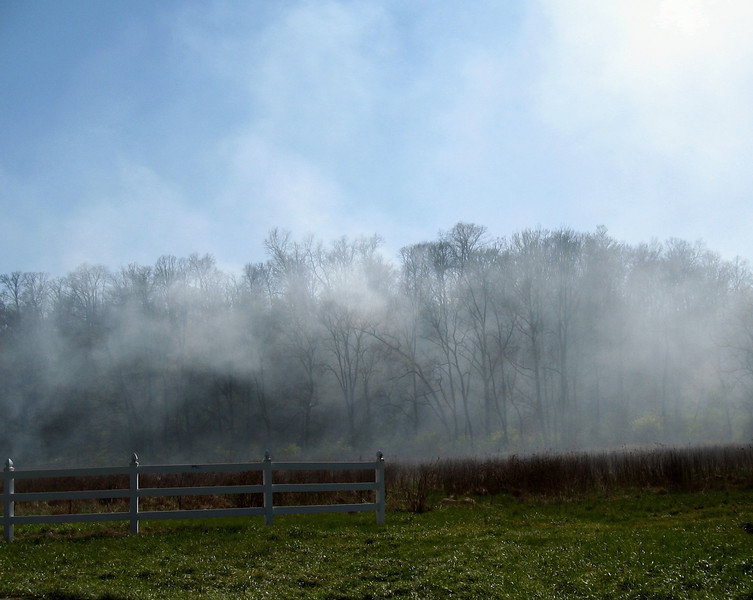 Smoke from a controlled burn drifting across the road.