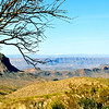 Big Bend Landscape