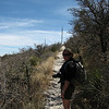 McKittrick Canyon - Guadalupe National Park<br /> (BW)