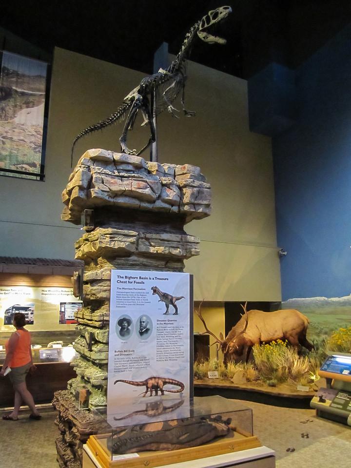 Draper Museum of Natural History, Buffalo Bill Historical Center