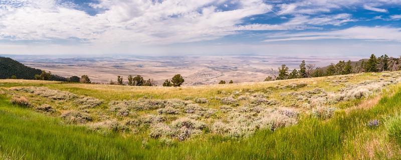 Bighorn Basin