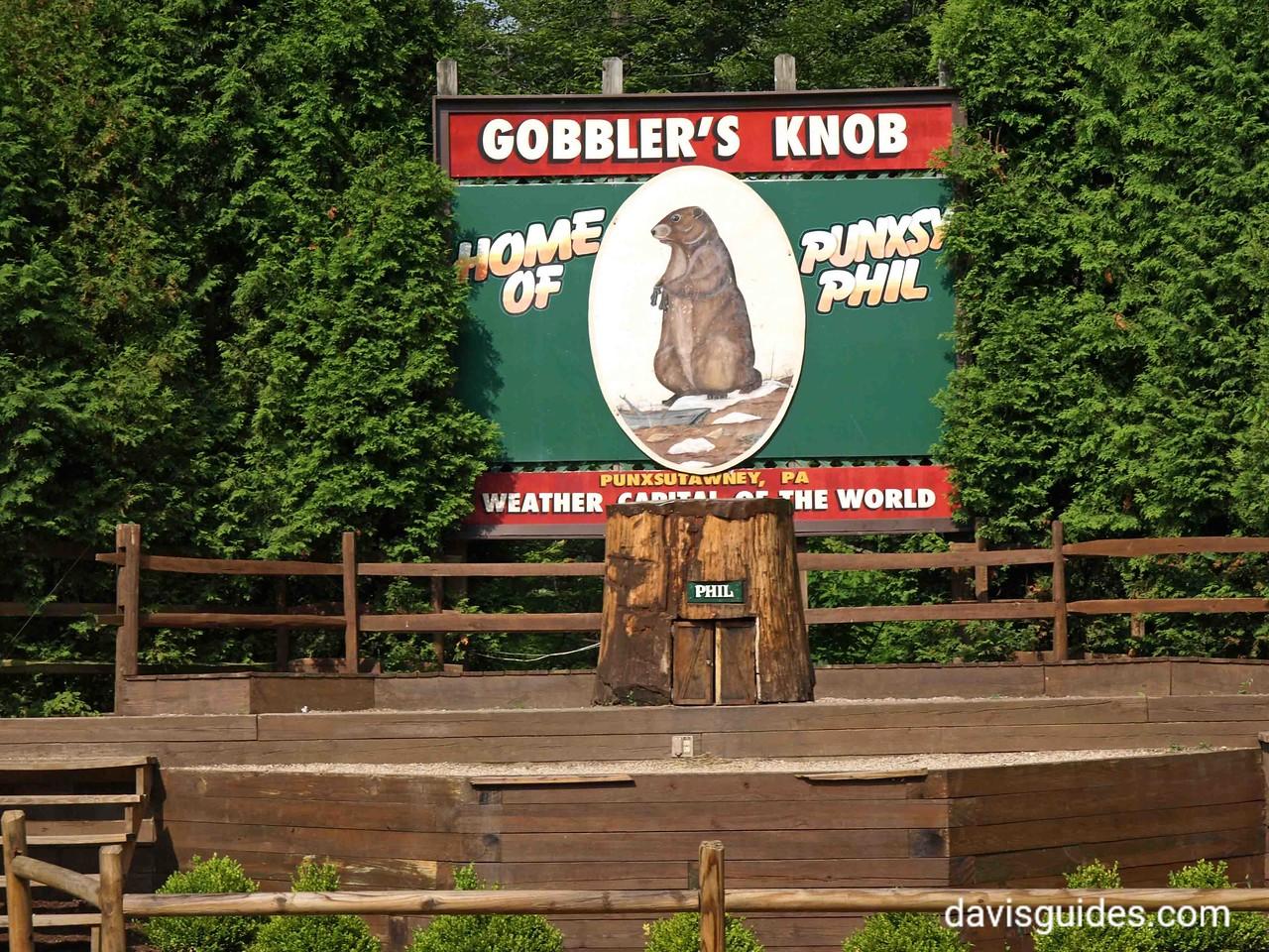 Gobbler's Knob above Punxatawney, PA