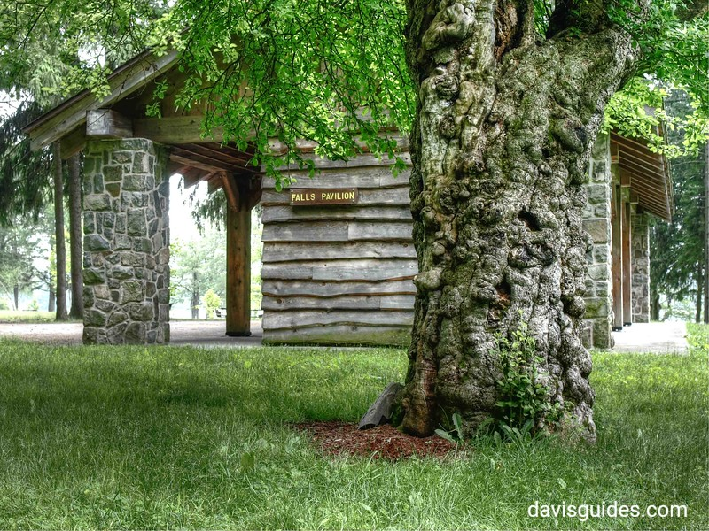 CCC picnic shelter, Promised Land State Park, PA
