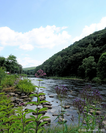 The Greenbrier River runs near the Cass State Park. This is one of eight rivers that  have their headwaters in Pocahontas County.