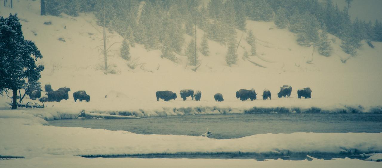 Hangin at the Yellowstone Hot Tubs