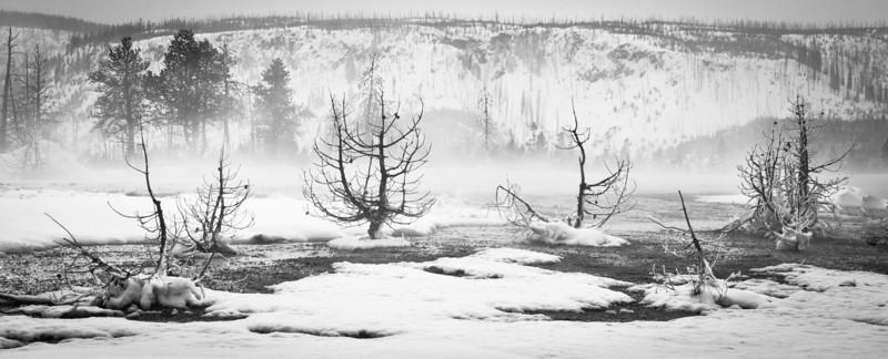 Winter on the Madison