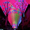 Light show at Freemont Street