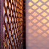 """<span id=""""title"""">Lattice Sunset</span> At our friends' porch in Berkeley"""