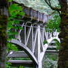 """<span id=""""title"""">Latourell Creek Bridge</span> Near Latourell Falls. It was nice to see all the moss-covered trees, quite a change from Southern California."""