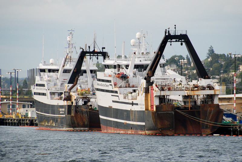 """<span id=""""title"""">Factory Trawlers</span> Boooo! A lot of cheap fish probably comes from these guys. Who knows how many other animals they inadvertently kill."""