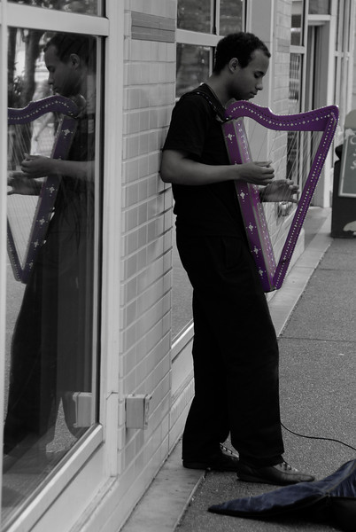 """<span id=""""title"""">Street Harpist</span> Don't see this every day. Cool purple harp."""