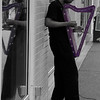 "<span id=""title"">Street Harpist</span> Don't see this every day. Cool purple harp."
