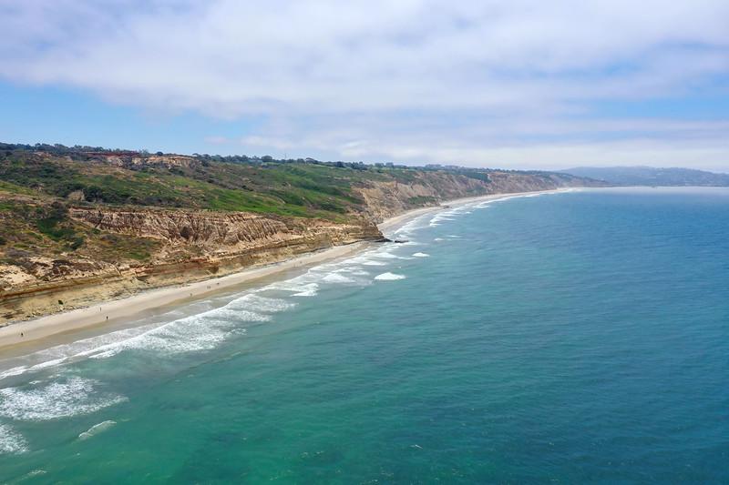 Torrey Pines - California
