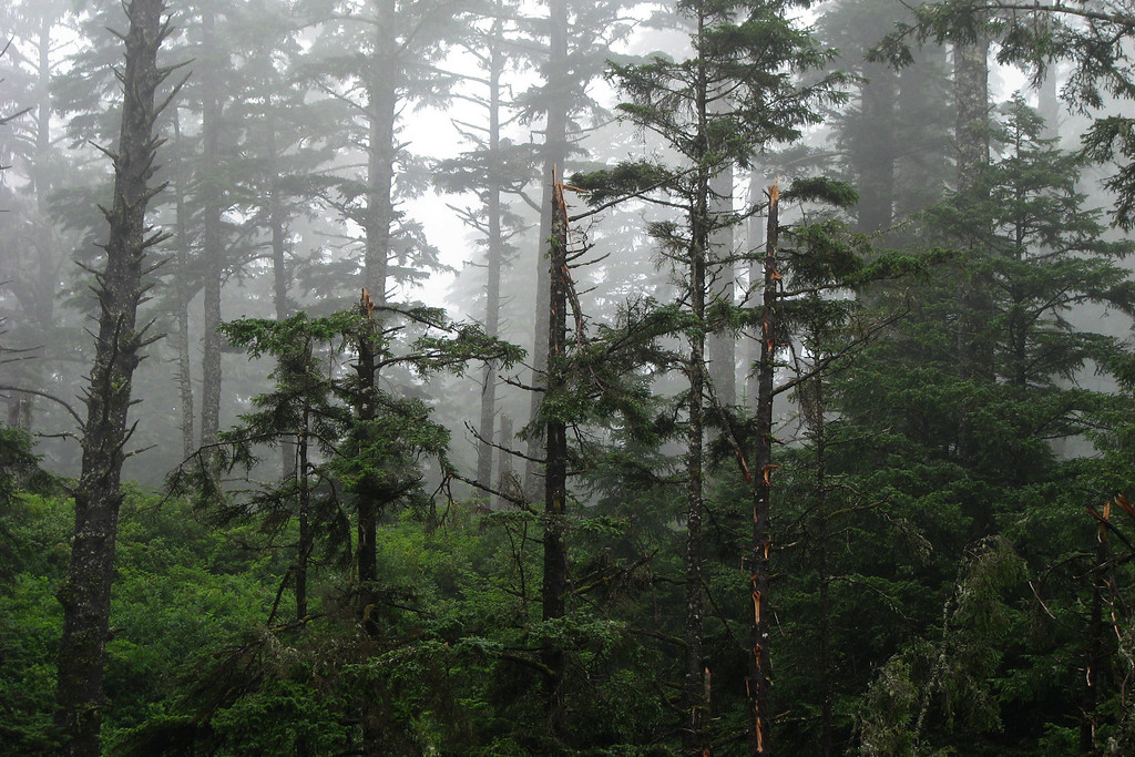 West Coast Trail, BC, Canada