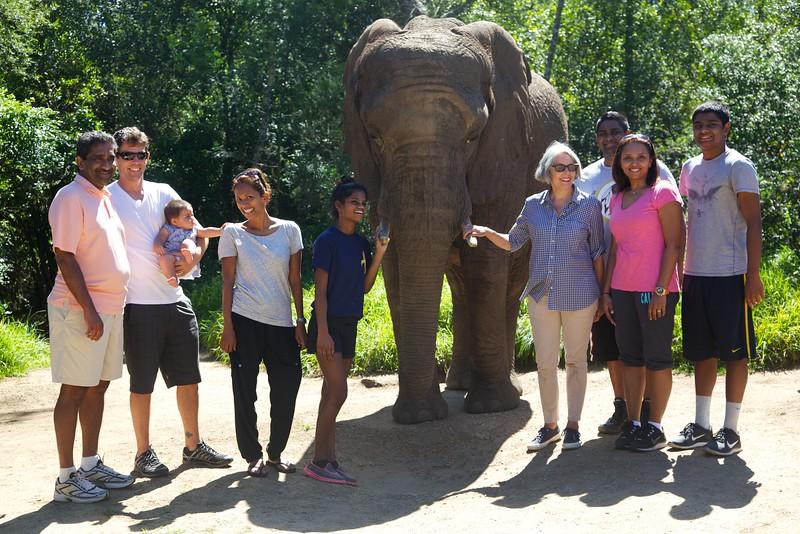 The whole crew (Leroy, Adam, Eden, Sureka, Maya, Candis, Jordan, Anne and Haley)