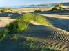Lawson's Landing Beach, CA.