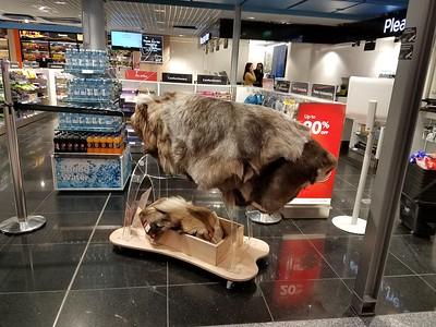 reindeer hides for sale at Helsinki airport