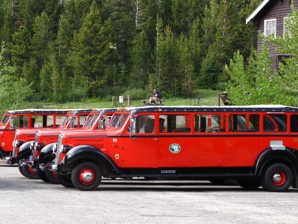 Glacier National Park's famous fleet of historic red buses.