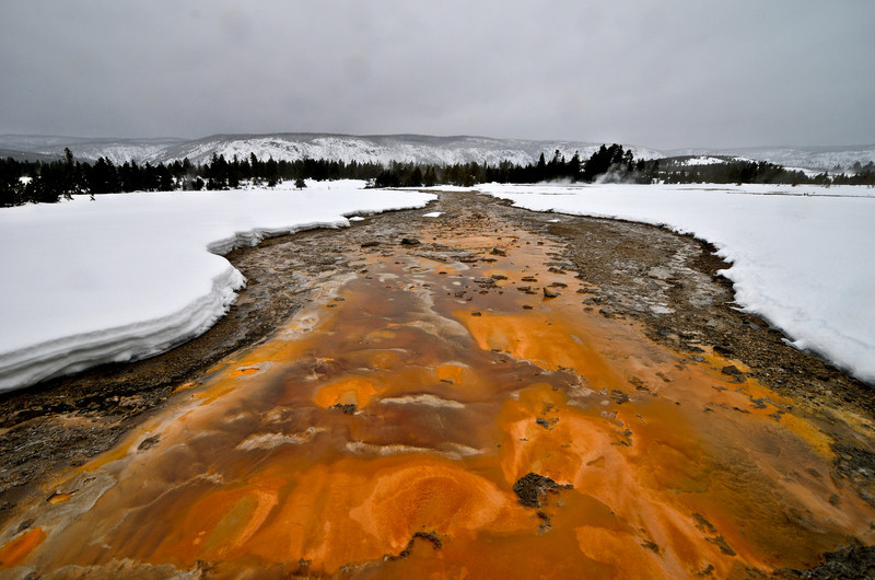 Colorful hot mineral springs in Yellowstone National Park during wintertime.