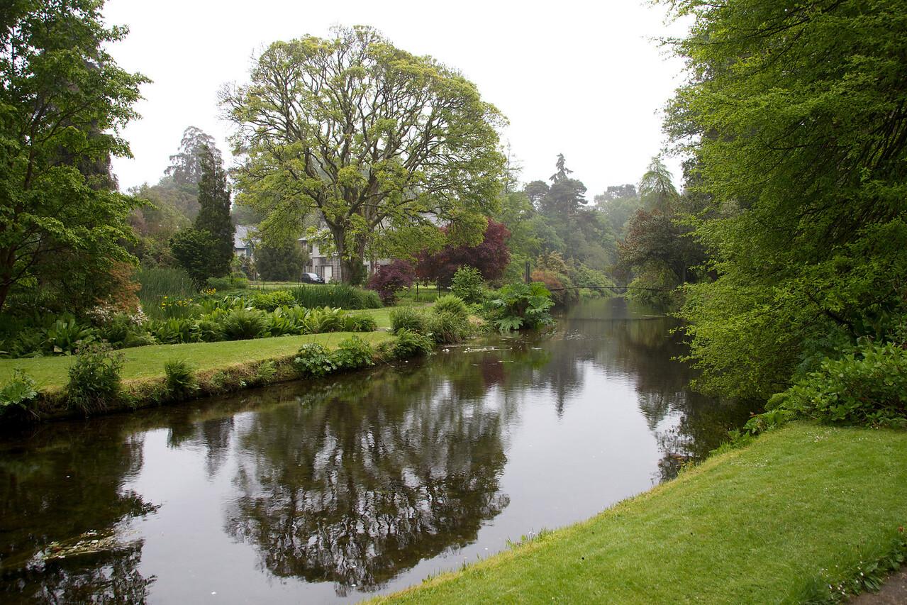 dublin , usher gardens