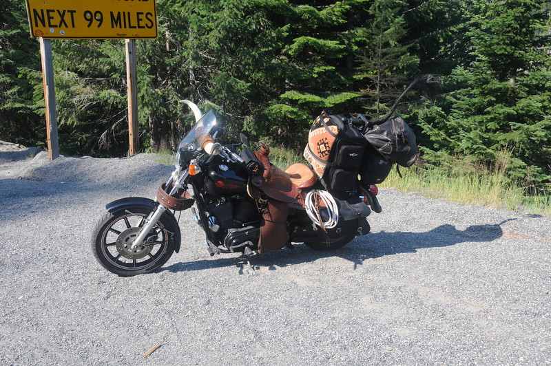 You never know what you're going to see on the road...
