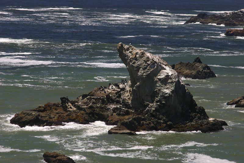 coastal rocks - seal rock