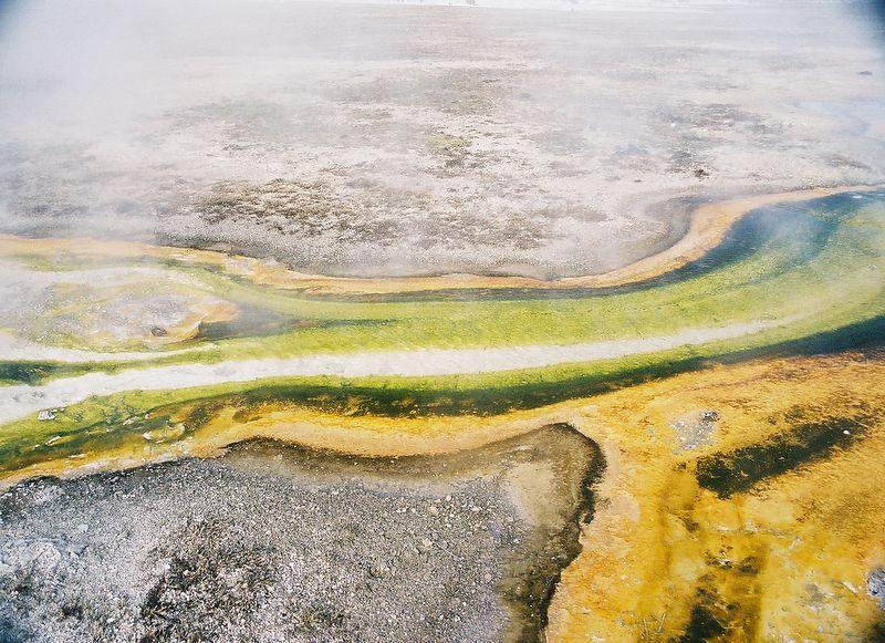 yellowstone - bacteria in geyser pool