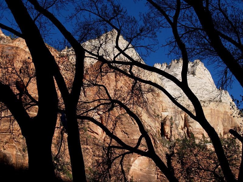 Zion National Park, Utah, April 12, 2006.