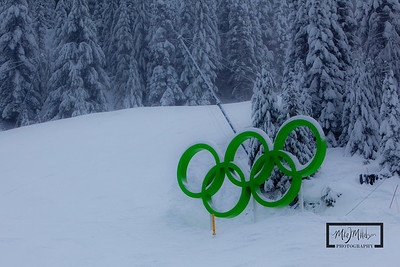 Olympic Rings near the end of the Olympic Downhill course on Whistler Mountain.  © Copyright m2 Photography - Michael J. Mikkelson 2009. All Rights Reserved. Images can not be used without permission.