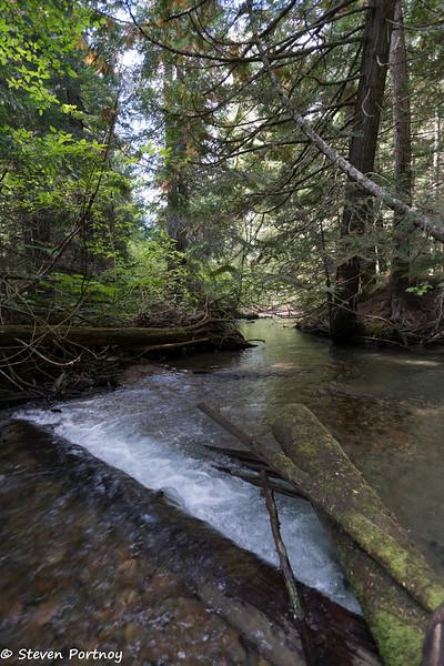 Fitzsimmons Creek