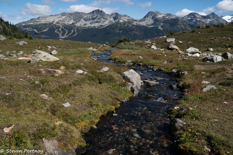 Harmony Meadow, Whistler Mountain