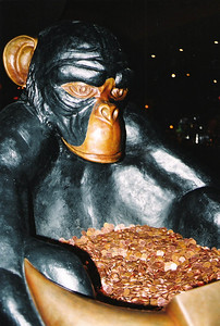 The richest chimp in the world
