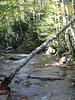 Falling Waters Brook. On way up Mount Haystack
