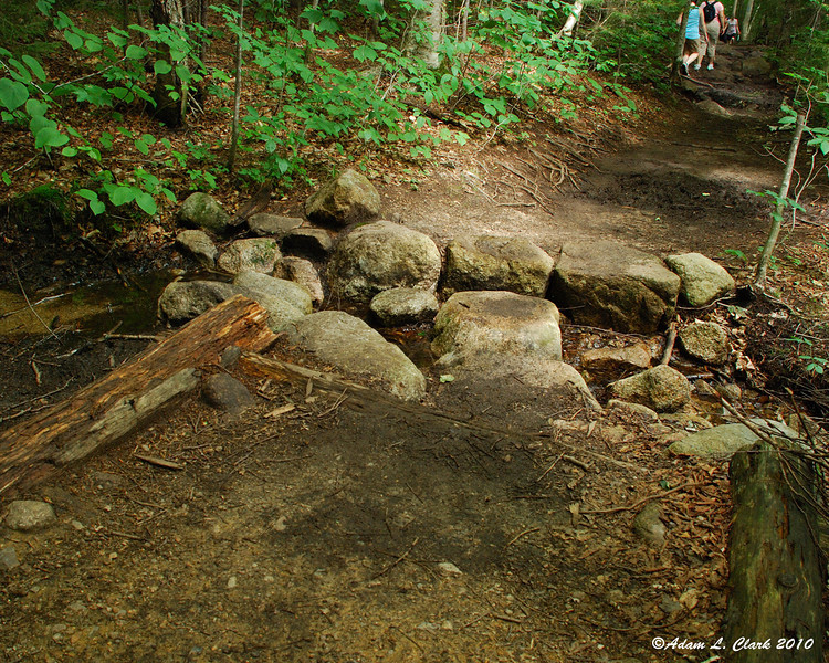 There are a couple small brook crossings in the trail, but they are very easy