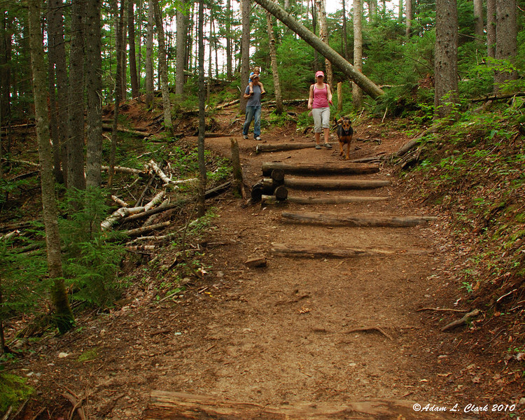 Most of the climbs/decents in the second half of the trail have steps made from old trees