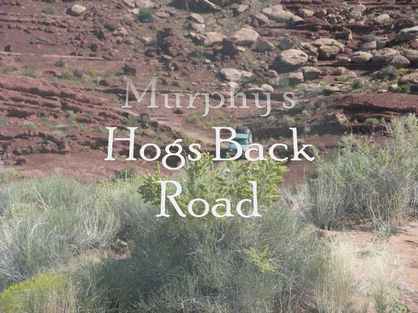 Begining of Murphy's Hogd Back area.