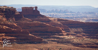 Looking towards the Needles district