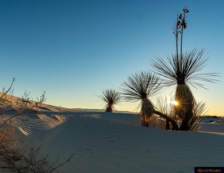 Sunrise in White Sands National Park