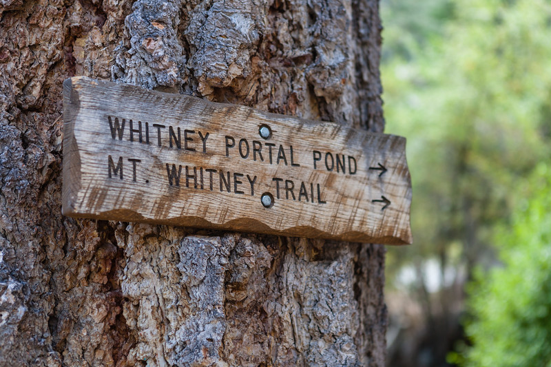 Sign post showing the way to Whitney Portal and the trailhead from the campground