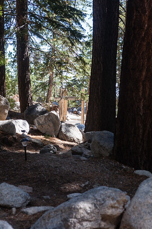 This is the view of the trailhead when sitting at the patio