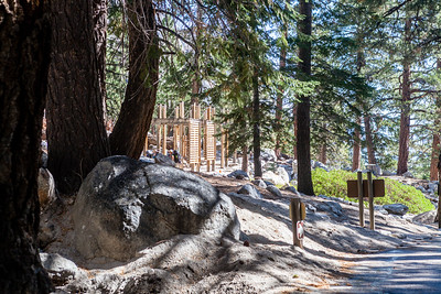 To backpackers, this is an iconic site.  It is the trailhead for hiking up Mt Whitney but also it is where the John Muir Trail (JMT) hikers exit their 220 mile long journey