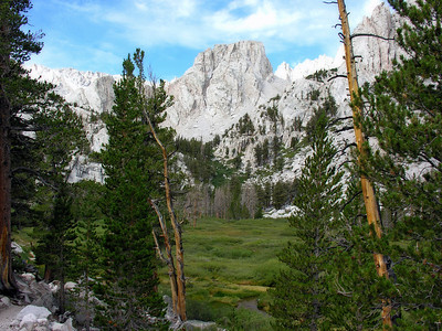 High Country Meadow 1