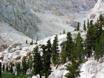 Trail Surroundings