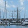 Sailboats anchored off at the marina at Whitsundays, Australia.