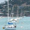 Sailboats at Whitsundays, Australia.