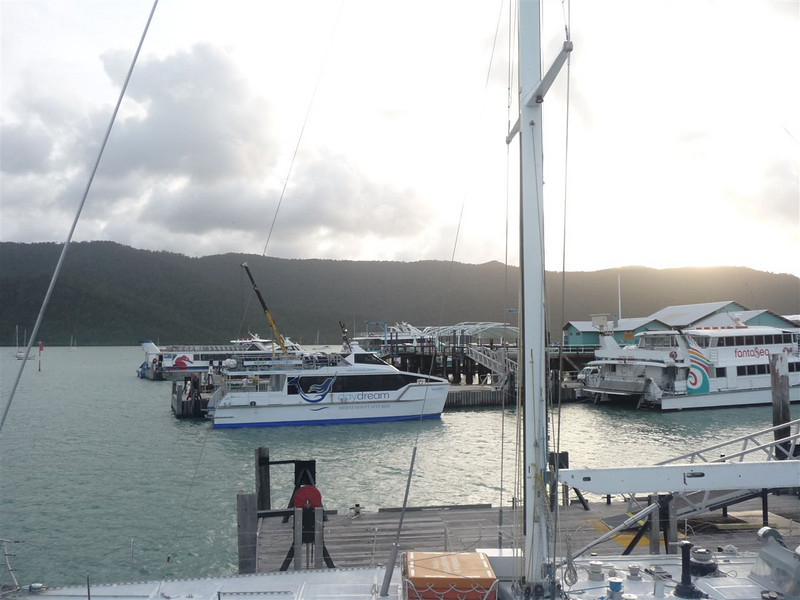 Shute Harbour with ferries carrying people to Whitsunday, Hamilton, and other islands.