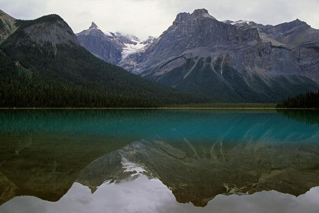 Emerald Lake Reflection
