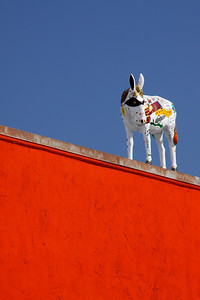 12th Street burro   Corrizozo New Mexico